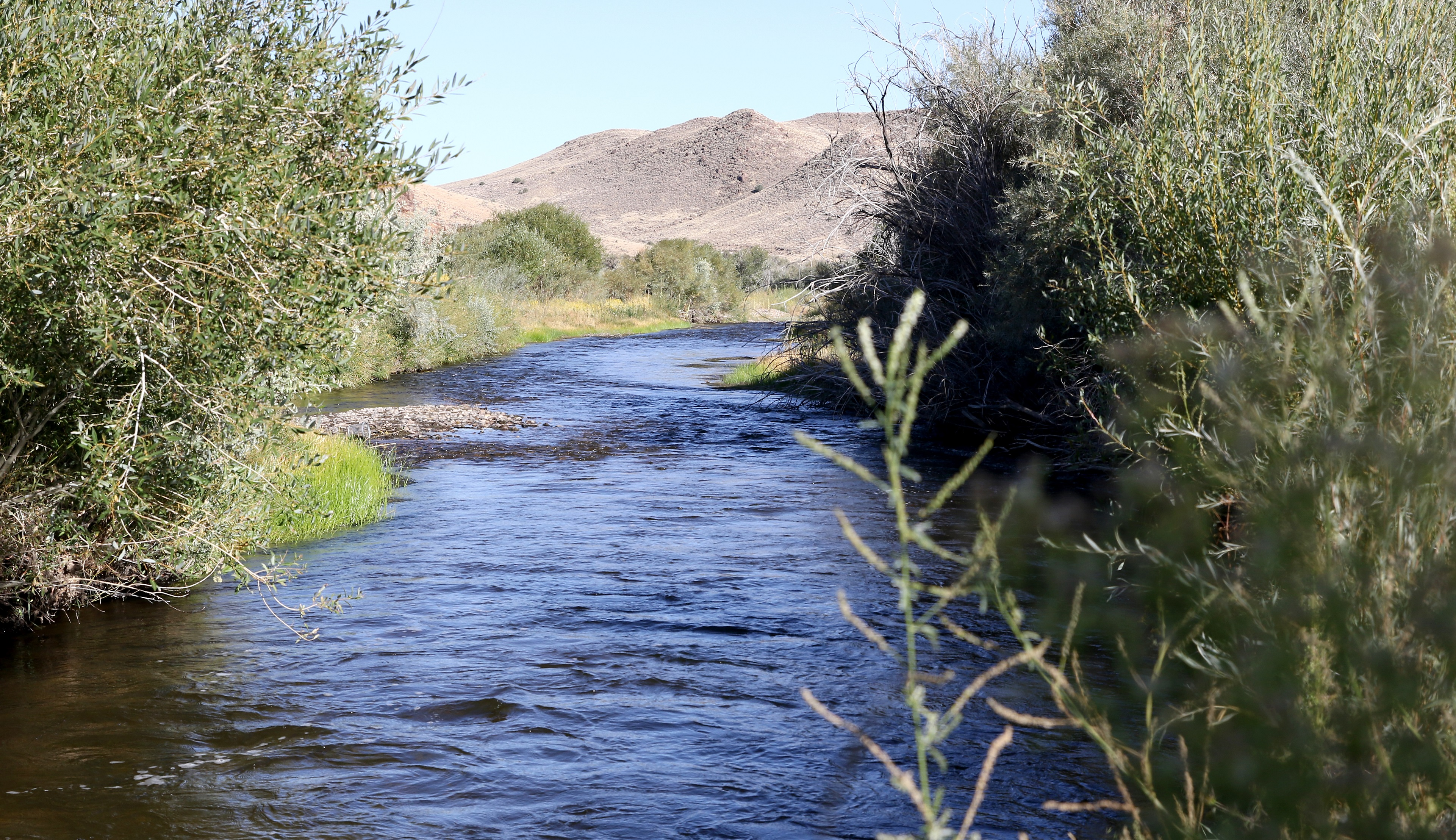 The Walker River State Recreation Area, Nevada's Newest